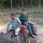 Hoch zu Elefant!